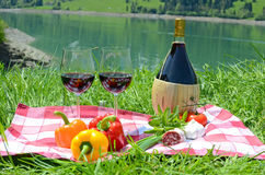 Wine and vegetables served at a picnic Royalty Free Stock Photos