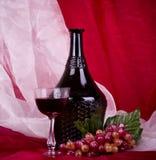 Wine in vetro e bottiglia con l'uva rossa Fotografia Stock Libera da Diritti