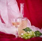 Wine in vetro e bottiglia con l'uva verde Fotografie Stock