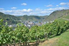 Wine Village of Alken,Mosel Valley,Germany. Wine Village of Alken at Mosel River in Mosel Valley near Cochem,Rhineland-Palatinate,Germany royalty free stock photography