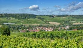 Grosswinternheim,Rhinehessen wine region,Germany. Wine Village of Grosswinternheim in Rhinehessen wine region near Ingelheim,Rhineland-Palatinate,Germany stock photo