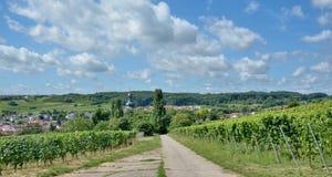 Jugenheim,Rhinehessen wine region,Germany. Wine Village of Jugenheim in Rhinehessen wine region,Rhineland-Palatinate,Germany stock images