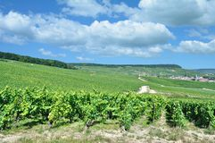 Wine Village of Oger,Champagne region,Epernay,France Stock Photography