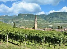 Wine Village of Tramin, South Tirol, Italy. Wine Village of Tramin near Lake Caldaro and Merano at Wine Road in South Tirol, Trentino, Alto Adige, Italy royalty free stock image