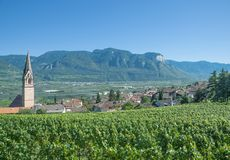 Wine Village of Tramin,south Tyrolean Wine Route,Italy Royalty Free Stock Photo