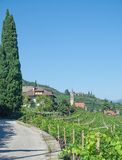 Wine Village of Tramin,south Tyrolean Wine Route,Italy. Wine Village of Tramin near merano and Bolzano,South Tyrolean Wine Route,Trentino,Alto Adige,Italy royalty free stock image
