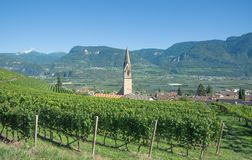 Wine Village of Tramin, south Tyrolean Wine Route, Italy. Village of Tramin near merano and Bolzano, South Tyrolean Wine Route, Trentino, Alto Adige, Italy royalty free stock image