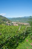 Wine Village of Tramin,south Tyrolean Wine Route,Italy Stock Photos