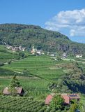 Wine Village of Tramin,south Tyrolean Wine Route,Italy Royalty Free Stock Images