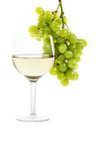 Wine and vine Stock Photos