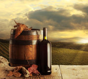 Wine and vineyard Stock Photos