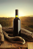 Wine and vineyard Royalty Free Stock Images