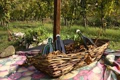 Wine,vineyard,autumn,averno,baia,italy. Basket with bottles of wine resting on the table. historic vineyard on Lake Averno in Campania Royalty Free Stock Image