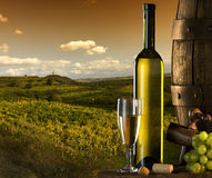 Wine with vineyard on the background Royalty Free Stock Images