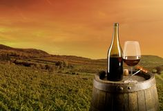 Wine with vineyard on background. Red wine on wooden keg with vineyard on background Royalty Free Stock Images