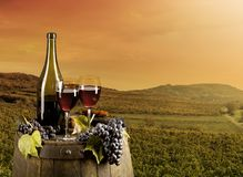 Wine with vineyard on background Royalty Free Stock Photos