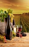 Wine in vineyard Stock Photography