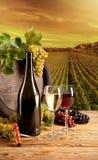 Wine in vineyard. Detail of wine with keg on vineyard Stock Photography