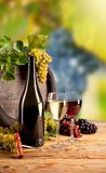 Wine in vineyard. Detail of wine with keg on vineyard Royalty Free Stock Photography
