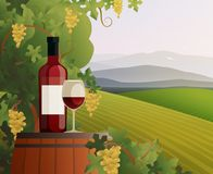Wine And Vineyard Illustration Stock Photos