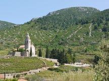 Wine vineyard in Komiza on Vis Royalty Free Stock Image
