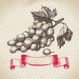 Wine vintage background with grapes. Hand drawn illustration Stock Images