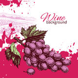 Wine vintage background Royalty Free Stock Images