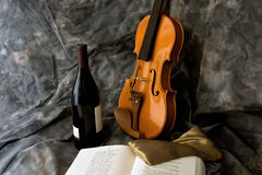 Wine and violin Stock Images