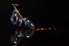 Wine and viticulture. Atmospheric dark image conceptual of red wine and viticulture with a suspended bunch of black grapes with droplets of red wine flowing from stock photos