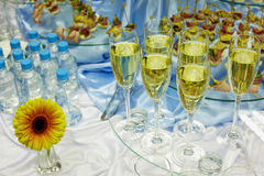 Wine, water, snacks and flower Stock Image