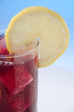 Wine whit lemon, vino de verano Stock Photo