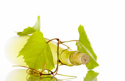 Wine on white Royalty Free Stock Image