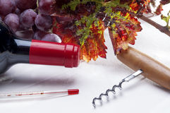 Wine on white. Backgroun with oenology tools Stock Photo