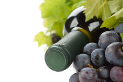 Wine and white grapes Royalty Free Stock Photos