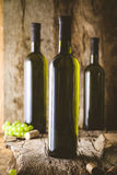 Wine in wine cellar Royalty Free Stock Images
