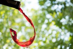 Wine. Glass red  glass pouring red drink royalty free stock photography