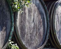 Wine wood barrels Royalty Free Stock Image