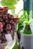 Wine  and young grape Royalty Free Stock Photo
