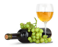 Wine and young grape Royalty Free Stock Image