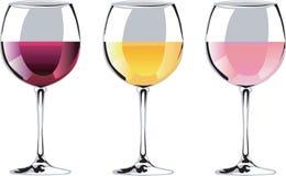 Wineavsmakning Royaltyfria Bilder