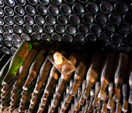 Winebottles in the cellar Royalty Free Stock Photos