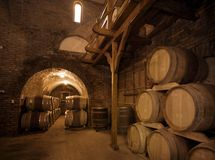 Winecellar Stock Images