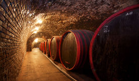 Winecellar Royalty Free Stock Images