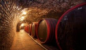 Winecellar Images libres de droits