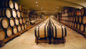 Winecellar Foto de Stock