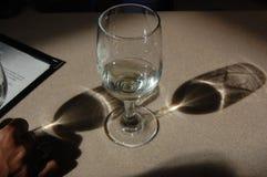 Wineexponeringsglas Arkivbild