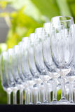 Wineexponeringsglas i trädgård Arkivfoton