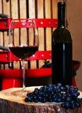 Wineframställning Arkivfoto