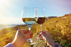 Wineglases in the hands Royalty Free Stock Image