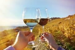 Wineglases nas mãos Imagem de Stock Royalty Free
